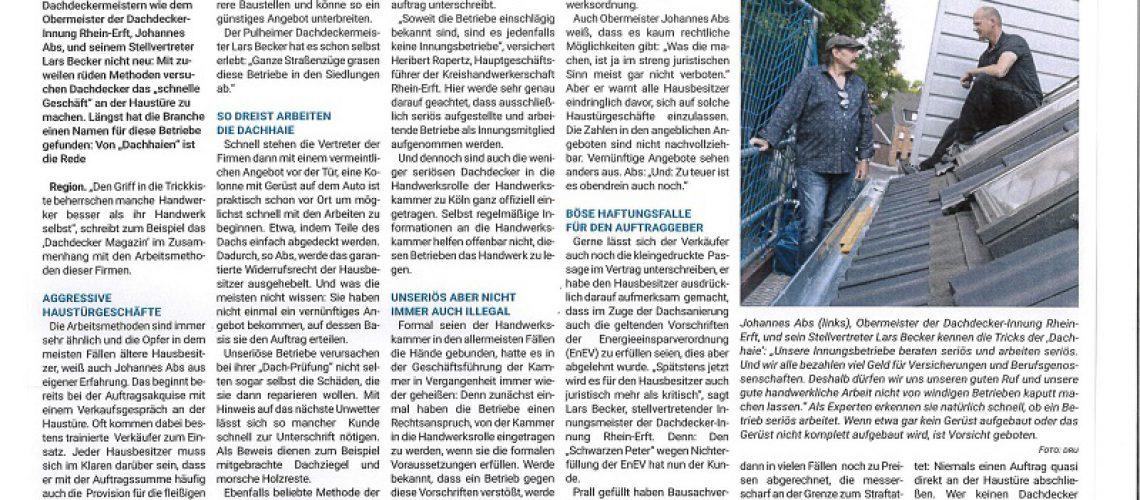 Pressebericht Dachhaie klein
